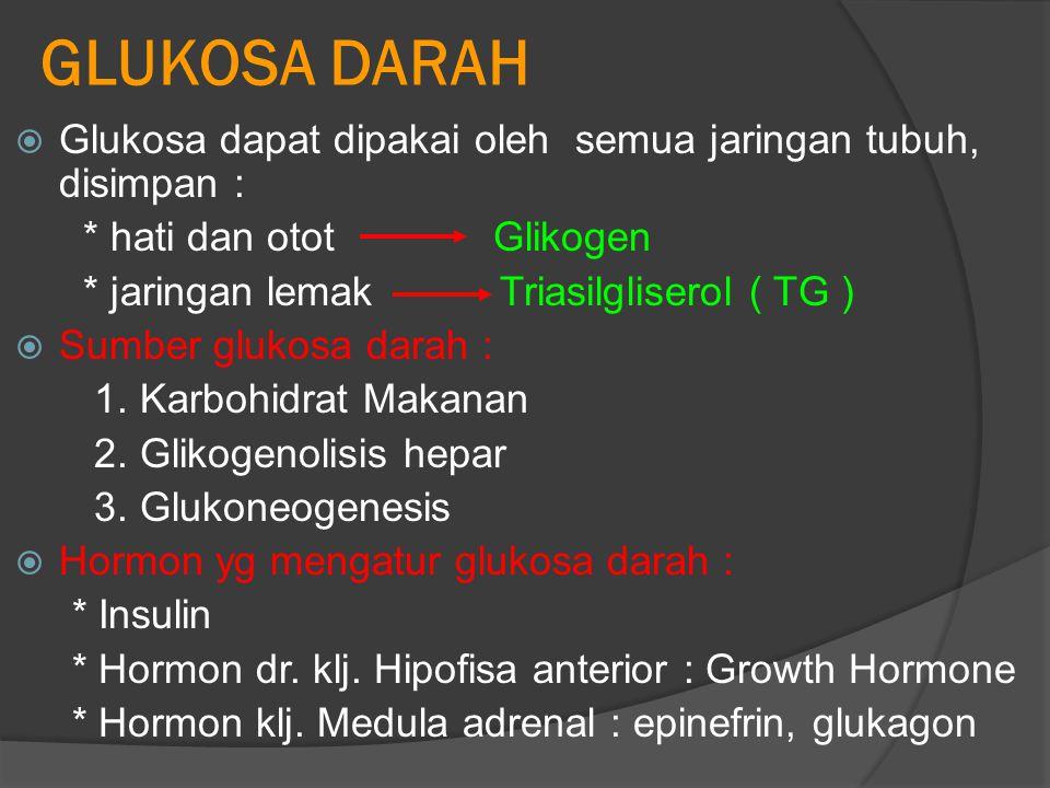 GLUKOSA DARAH  Glukosa dapat dipakai oleh semua jaringan tubuh, disimpan : * hati dan otot Glikogen * jaringan lemak Triasilgliserol ( TG )  Sumber glukosa darah : 1.