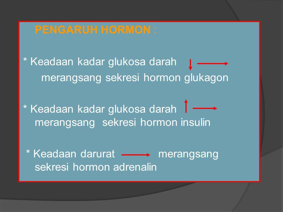  PENGARUH HORMON : * Keadaan kadar glukosa darah merangsang sekresi hormon glukagon * Keadaan kadar glukosa darah merangsang sekresi hormon insulin * Keadaan darurat merangsang sekresi hormon adrenalin
