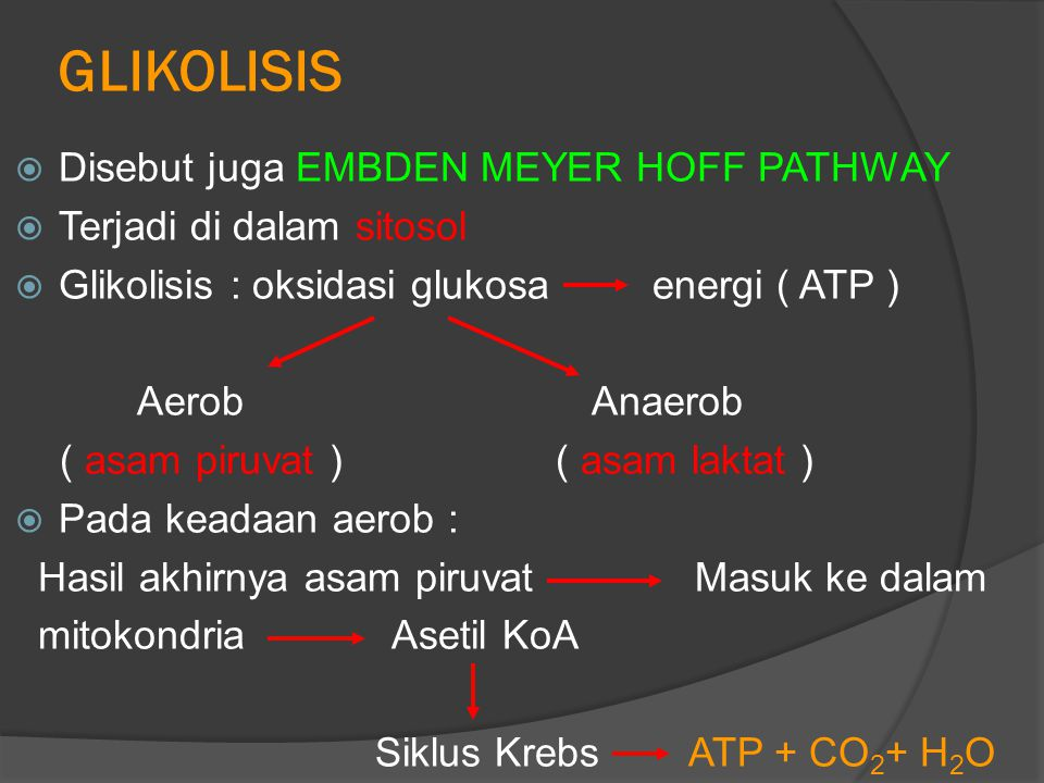 GLIKOLISIS  Disebut juga EMBDEN MEYER HOFF PATHWAY  Terjadi di dalam sitosol  Glikolisis : oksidasi glukosa energi ( ATP ) Aerob Anaerob ( asam piruvat ) ( asam laktat )  Pada keadaan aerob : Hasil akhirnya asam piruvat Masuk ke dalam mitokondria Asetil KoA Siklus Krebs ATP + CO 2 + H 2 O