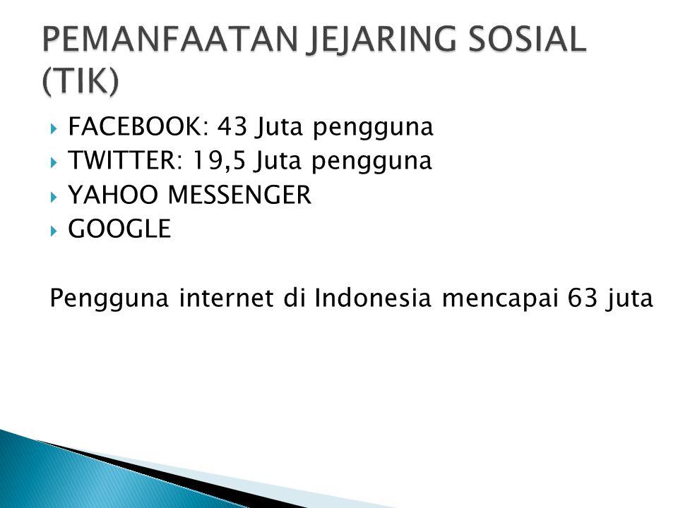  FACEBOOK: 43 Juta pengguna  TWITTER: 19,5 Juta pengguna  YAHOO MESSENGER  GOOGLE Pengguna internet di Indonesia mencapai 63 juta