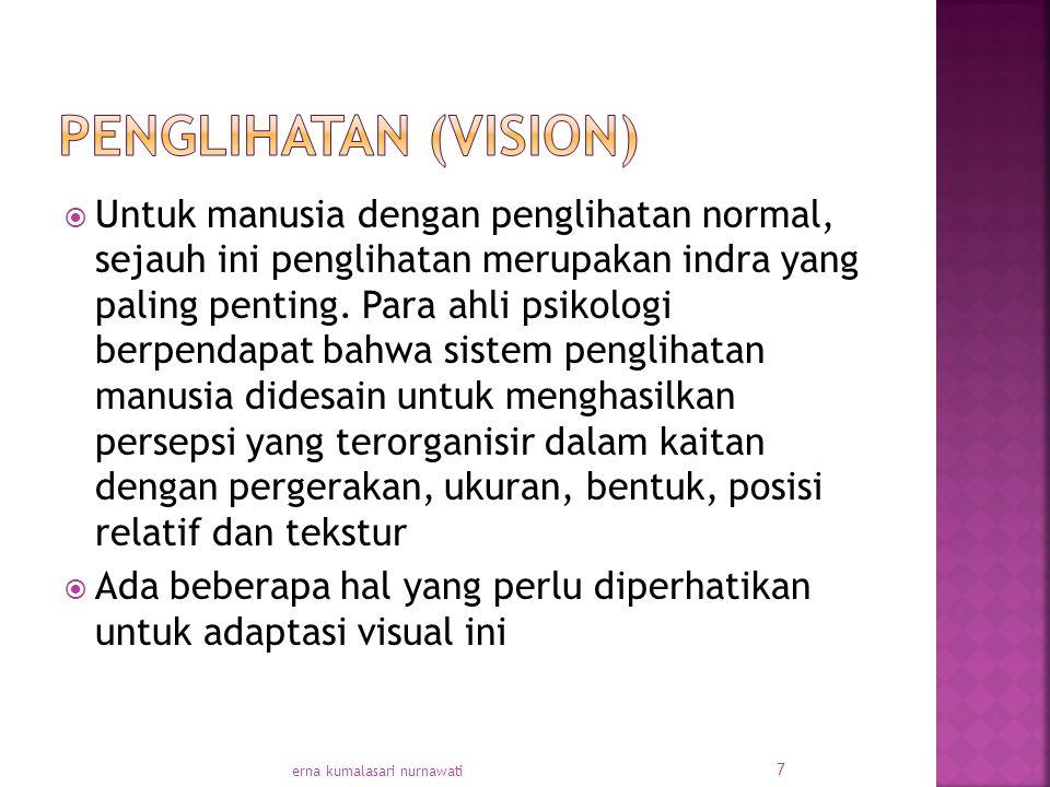  Untuk manusia dengan penglihatan normal, sejauh ini penglihatan merupakan indra yang paling penting.