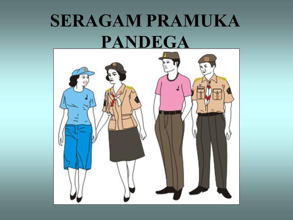 SERAGAM PRAMUKA PANDEGA