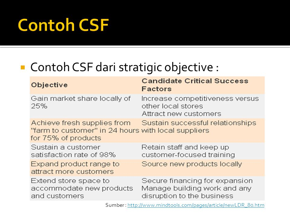  Selected CSF :  Sustain successful relationships with local suppliers.  attract new customers  financing for expansion