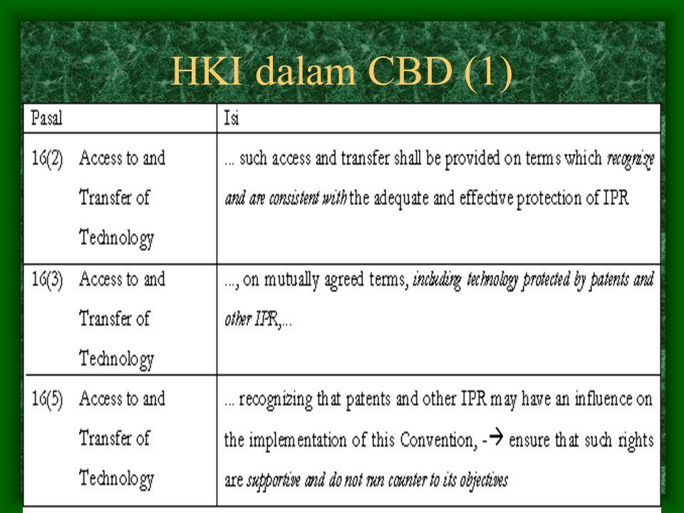 HKI dalam CBD (1)