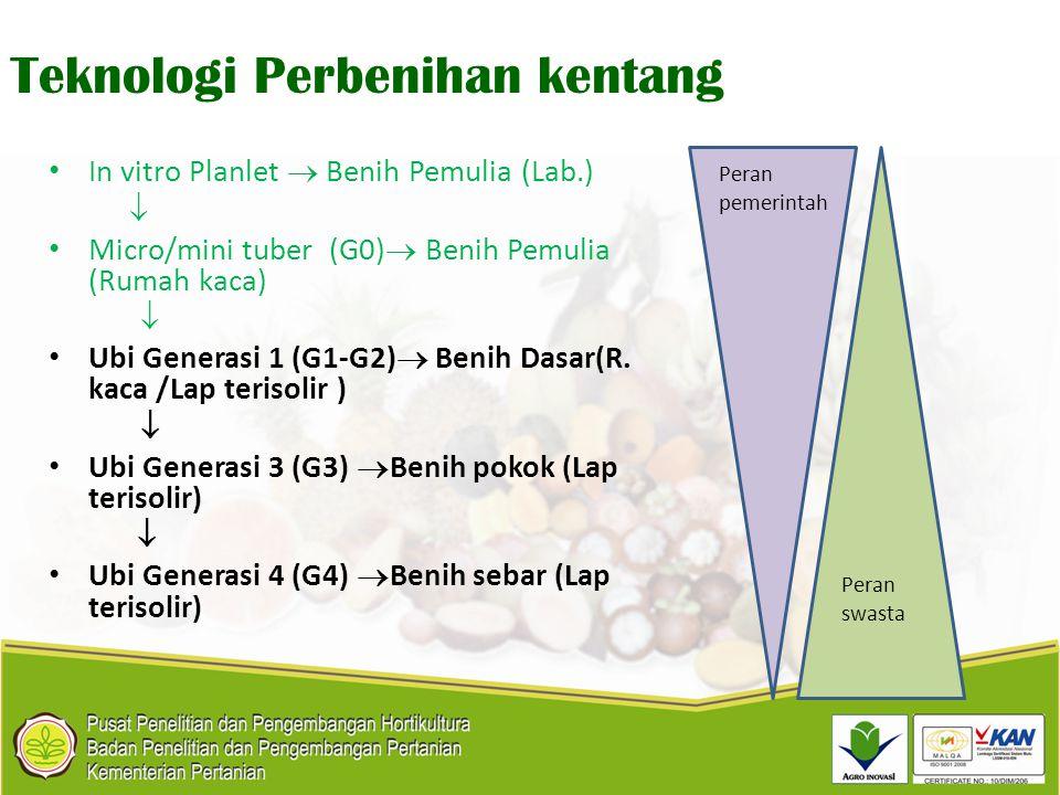 Teknologi Perbenihan kentang In vitro Planlet  Benih Pemulia (Lab.)  Micro/mini tuber (G0)  Benih Pemulia (Rumah kaca)  Ubi Generasi 1 (G1-G2)  B