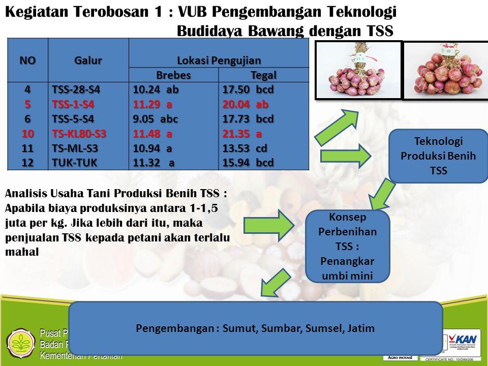 Kegiatan Terobosan 1 : VUB Pengembangan Teknologi Budidaya Bawang dengan TSSNOGalur Lokasi Pengujian BrebesTegal 4TSS-28-S4 10.24 ab 17.50 bcd 5TSS-1-