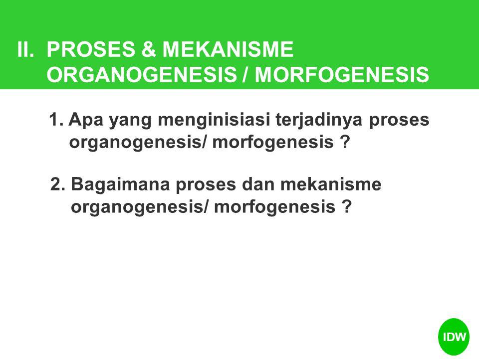 II. PROSES & MEKANISME ORGANOGENESIS / MORFOGENESIS 1. Apa yang menginisiasi terjadinya proses organogenesis/ morfogenesis ? 2. Bagaimana proses dan m