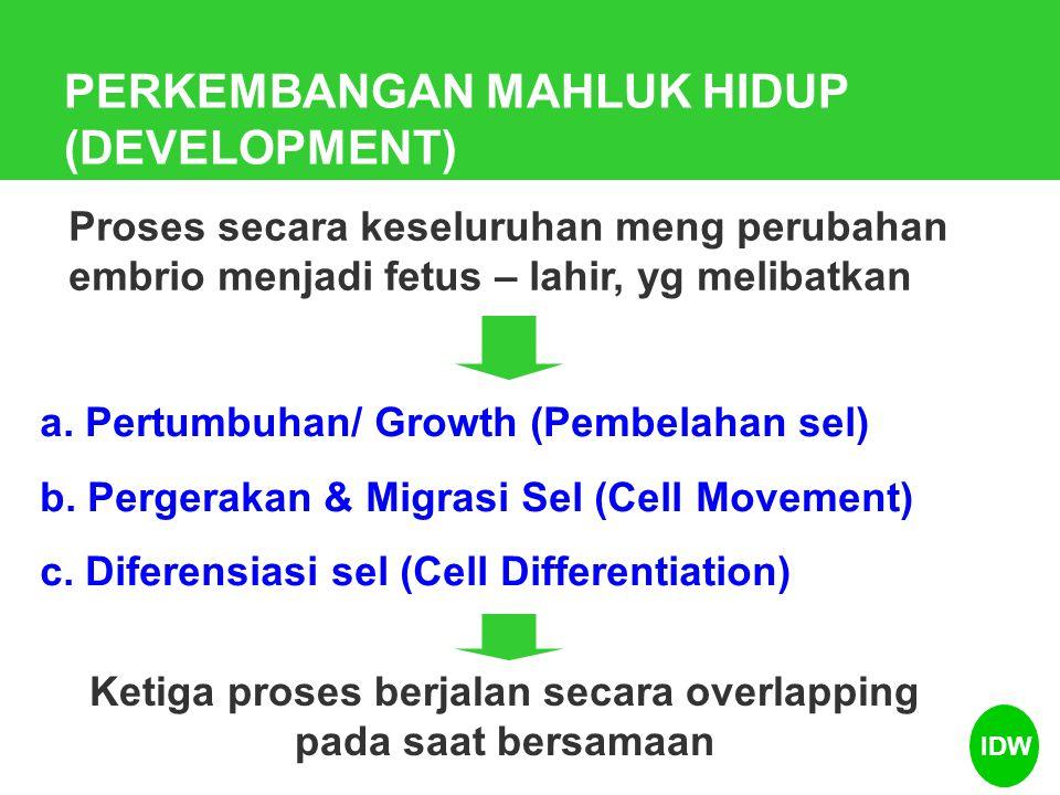 PERKEMBANGAN MAHLUK HIDUP (DEVELOPMENT) Proses secara keseluruhan meng perubahan embrio menjadi fetus – lahir, yg melibatkan a. Pertumbuhan/ Growth (P