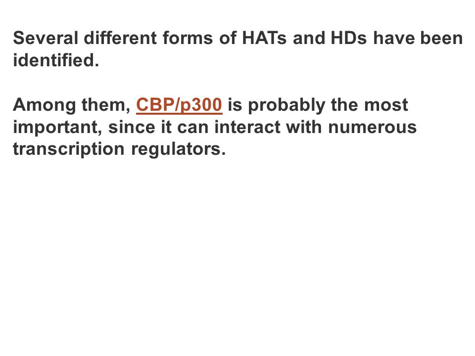Several different forms of HATs and HDs have been identified. Among them, CBP/p300 is probably the most important, since it can interact with numerous