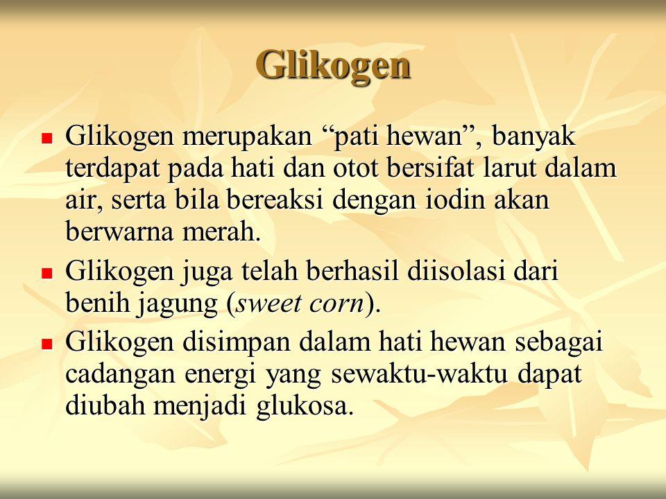 "Glikogen Glikogen merupakan ""pati hewan"", banyak terdapat pada hati dan otot bersifat larut dalam air, serta bila bereaksi dengan iodin akan berwarna"