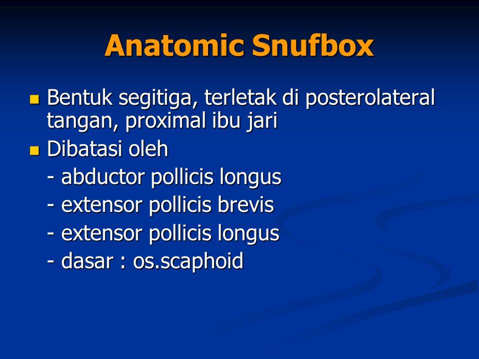 Anatomic Snufbox Bentuk segitiga, terletak di posterolateral tangan, proximal ibu jari Bentuk segitiga, terletak di posterolateral tangan, proximal ib