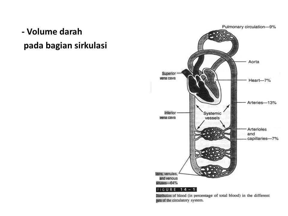- Cross sectional Area dan kecepatan aliran darah Vessels CSA (cm 2 ) Aorta2.5 Small Arteriks 20 Kapiler Arteriole 40 Venulis2500 Small Vein 80 Vena Carh 8