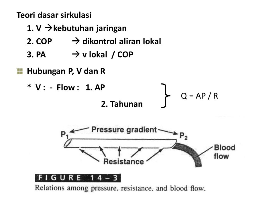 Teori dasar sirkulasi 1. V  kebutuhan jaringan 2. COP  dikontrol aliran lokal 3. PA  v lokal / COP Hubungan P, V dan R * V : - Flow : 1. AP 2. Tahu