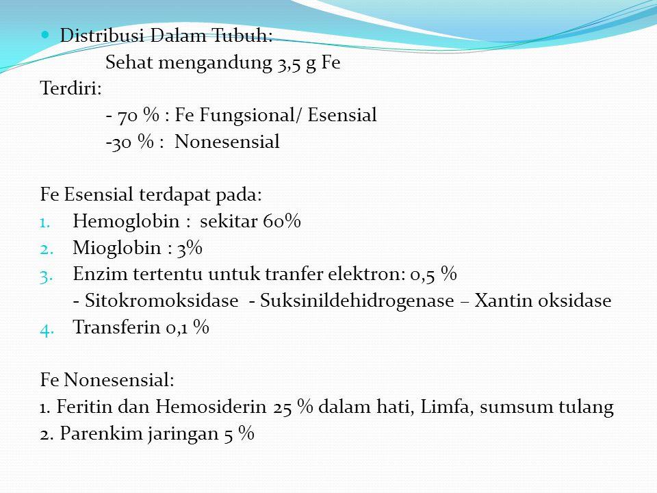Distribusi Dalam Tubuh: Sehat mengandung 3,5 g Fe Terdiri: - 70 % : Fe Fungsional/ Esensial -30 % : Nonesensial Fe Esensial terdapat pada: 1.