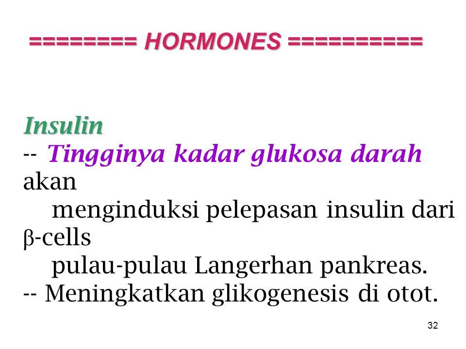 32 Insulin -- Tingginya kadar glukosa darah akan menginduksi pelepasan insulin dari β -cells pulau-pulau Langerhan pankreas.