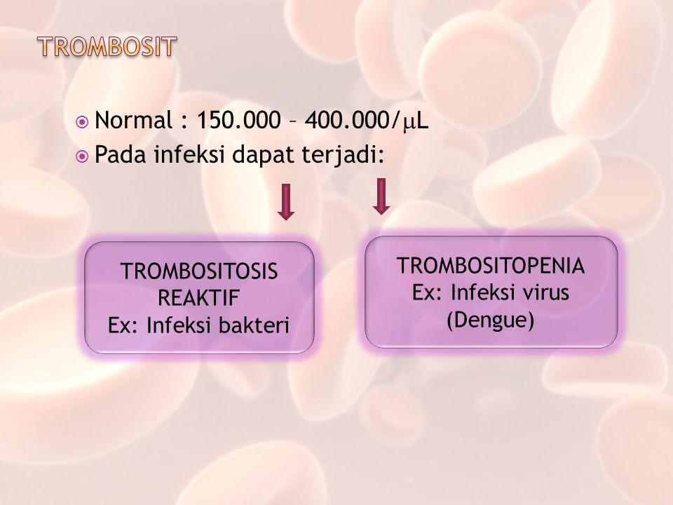  Normal : 150.000 – 400.000/  L  Pada infeksi dapat terjadi: TROMBOSITOSIS REAKTIF Ex: Infeksi bakteri TROMBOSITOPENIA Ex: Infeksi virus (Dengue)