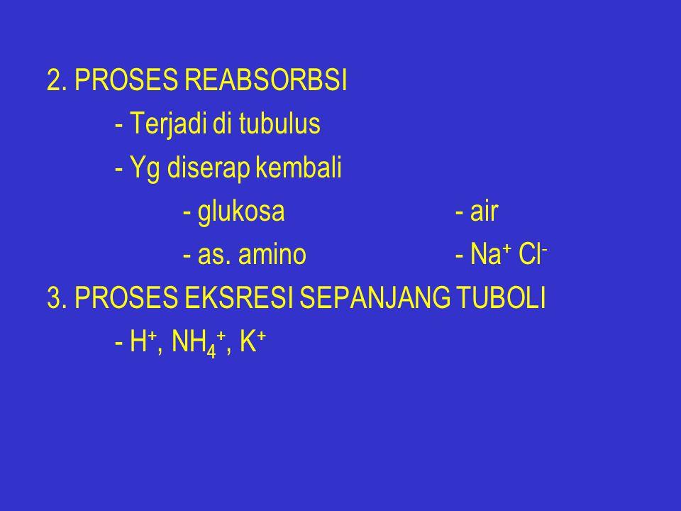 2.PROSES REABSORBSI - Terjadi di tubulus - Yg diserap kembali - glukosa- air - as.