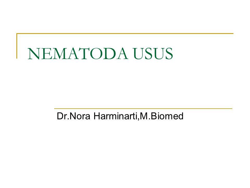 Nemathelminthes Platyhelminthes Nematoda Usus Nematoda Jaringan TrematodaCestoda ProtozoaHelminthArthropoda - Rhizopoda - Mastigophora = Flagellata - Ciliophora = Ciliata - Sporozoa PARASITOLOGI