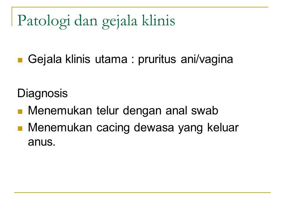 Patologi dan gejala klinis Gejala klinis utama : pruritus ani/vagina Diagnosis Menemukan telur dengan anal swab Menemukan cacing dewasa yang keluar an