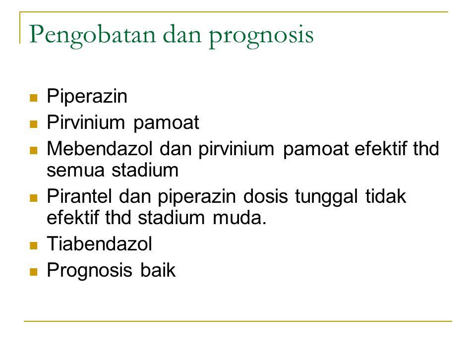 Pengobatan dan prognosis Piperazin Pirvinium pamoat Mebendazol dan pirvinium pamoat efektif thd semua stadium Pirantel dan piperazin dosis tunggal tid
