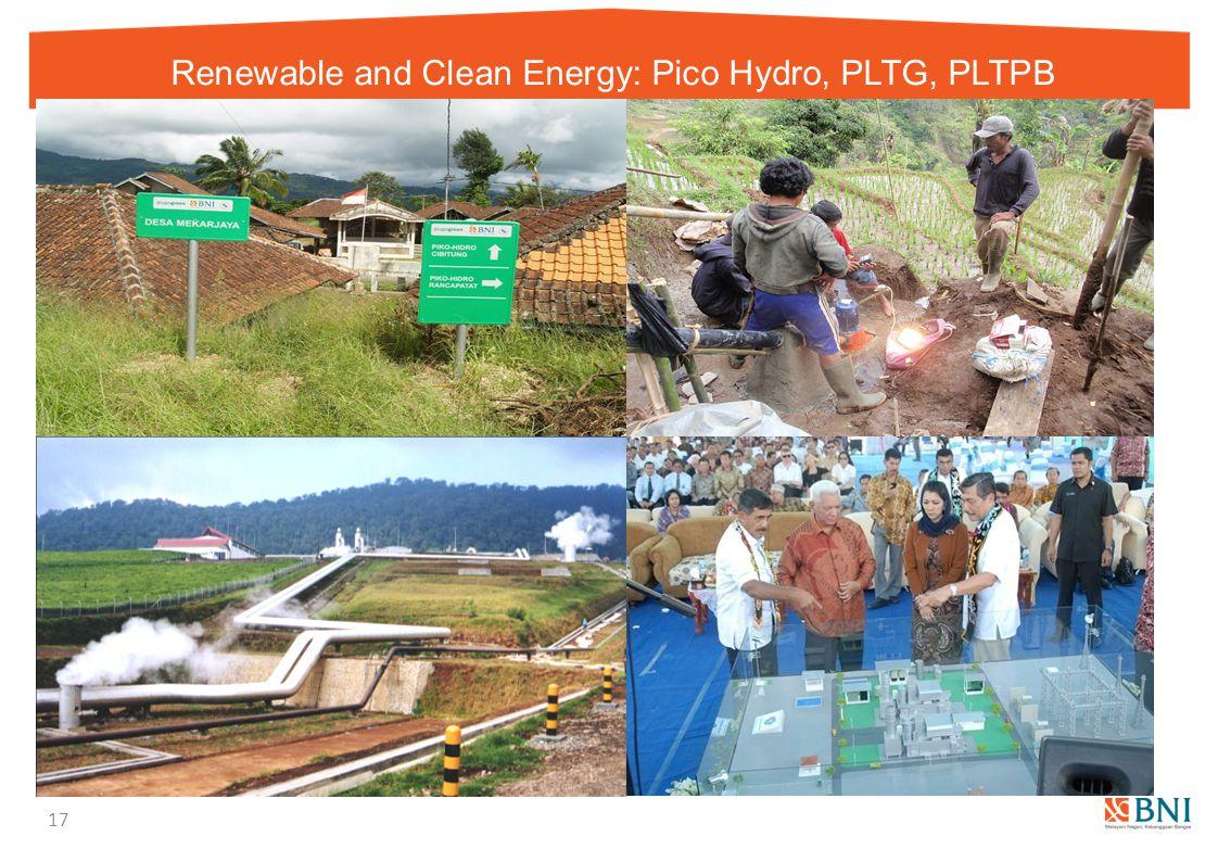 Renewable and Clean Energy: Pico Hydro, PLTG, PLTPB 17