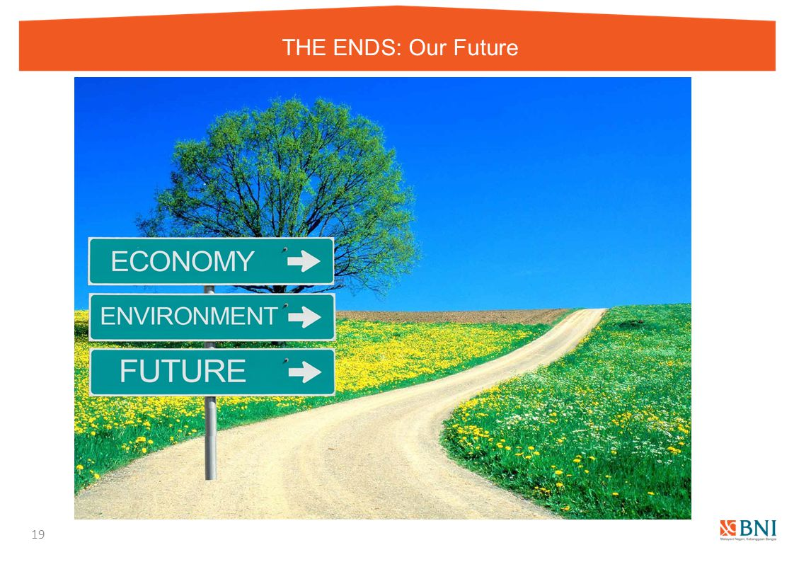 THE ENDS: Our Future 19