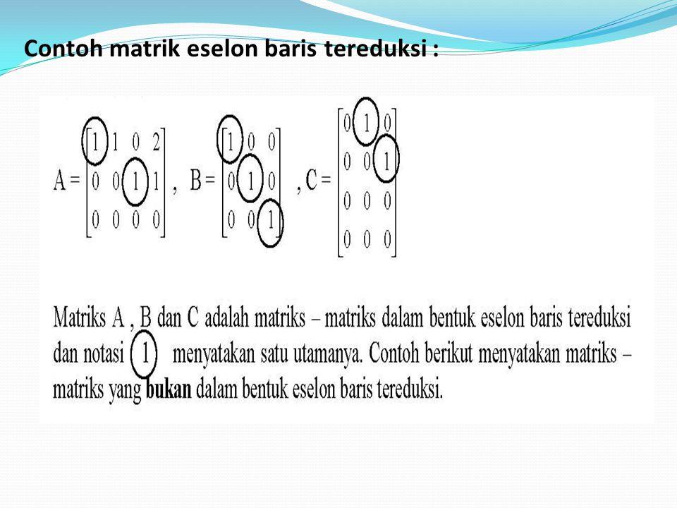 Contoh matrik eselon baris tereduksi :