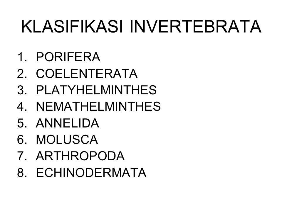 KLASIFIKASI INVERTEBRATA 1.PORIFERA 2.COELENTERATA 3.PLATYHELMINTHES 4.NEMATHELMINTHES 5.ANNELIDA 6.MOLUSCA 7.ARTHROPODA 8.ECHINODERMATA