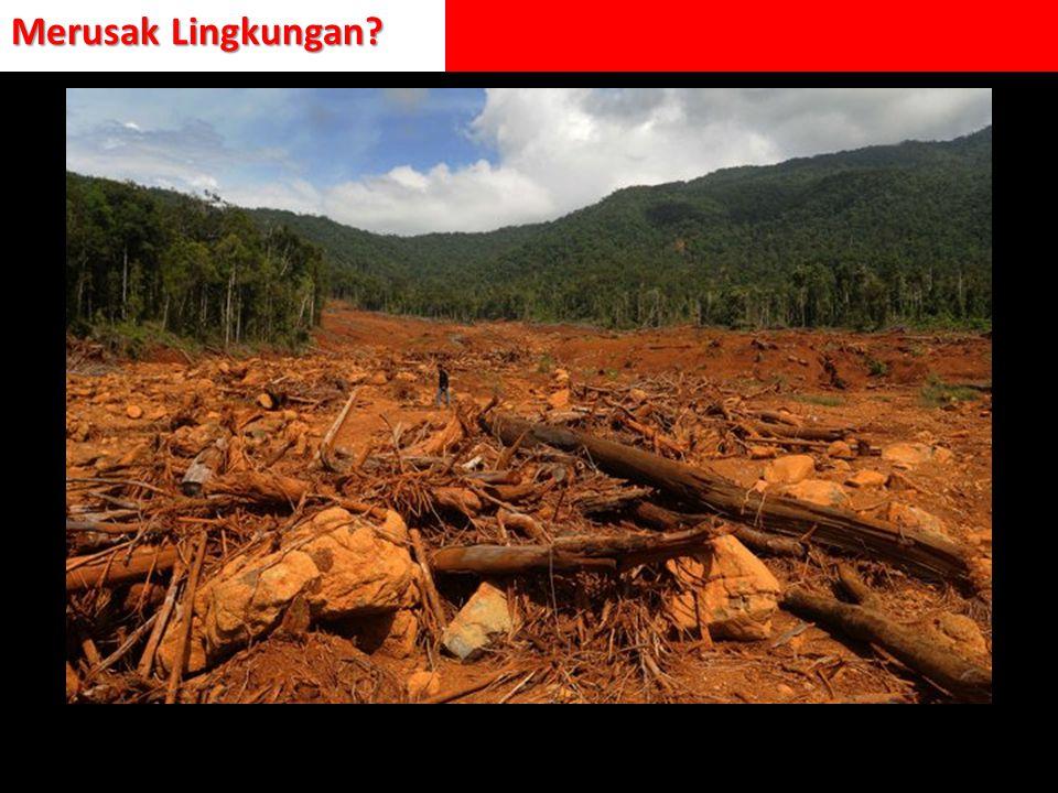 Merusak Lingkungan?