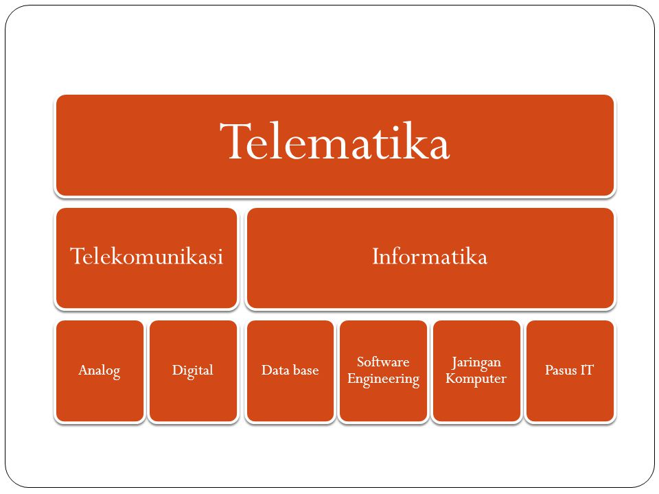 Telematika Telekomunikasi AnalogDigital Informatika Data base Software Engineering Jaringan Komputer Pasus IT