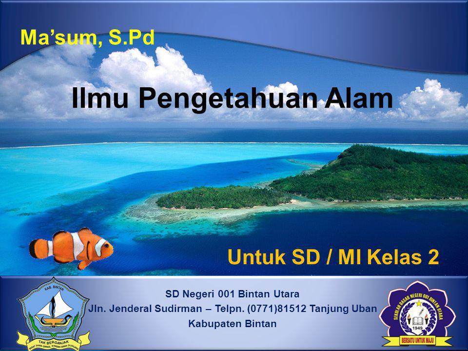 SD Negeri 001 Bintan Utara Jln.Jenderal Sudirman – Telpn.