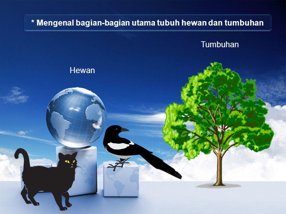 * Mengenal bagian-bagian utama tubuh hewan dan tumbuhan Tumbuhan Hewan