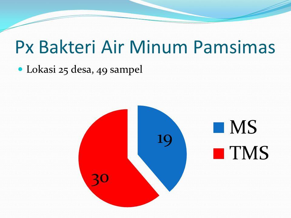 Px Bakteri Air Minum Pamsimas Lokasi 25 desa, 49 sampel