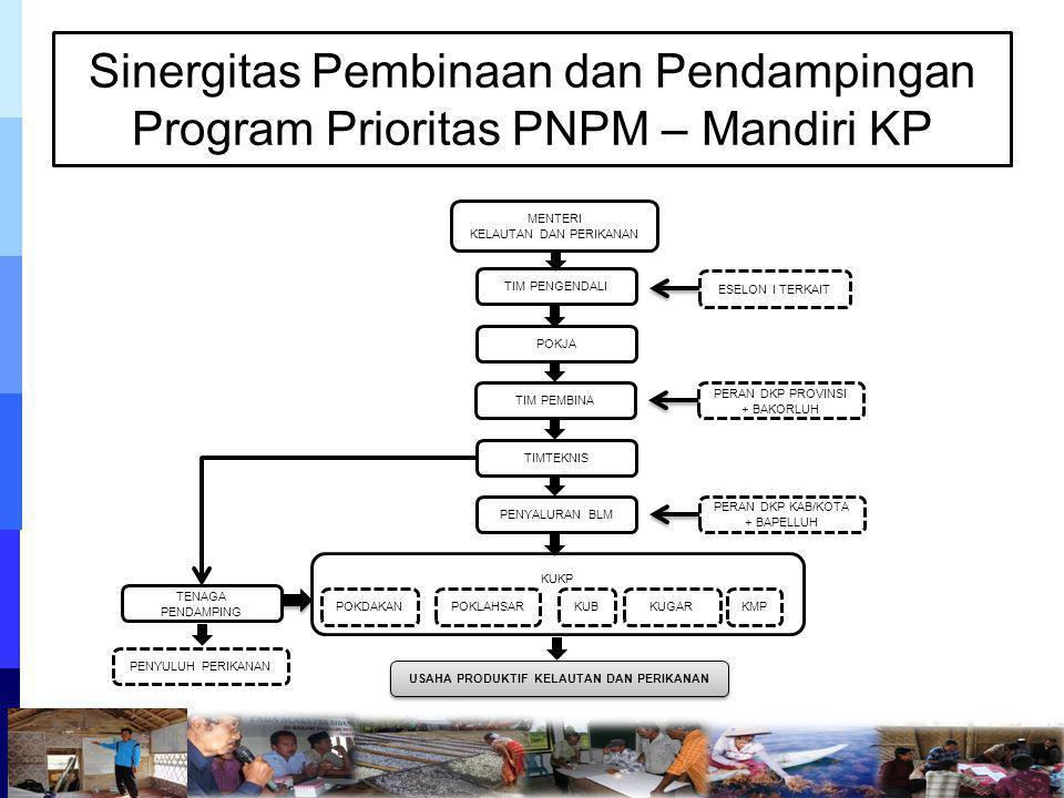Sinergitas Pembinaan dan Pendampingan Program Prioritas PNPM – Mandiri KP KUKP MENTERI KELAUTAN DAN PERIKANAN TIM PENGENDALI POKJA TIM PEMBINA TIMTEKN