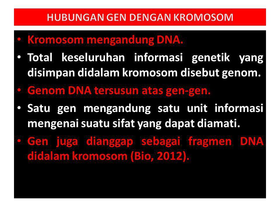 Kromosom mengandung DNA.