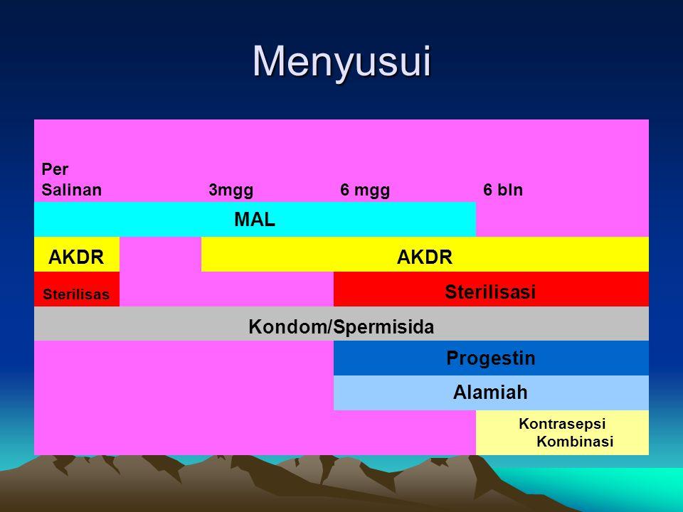 Menyusui Per Salinan 3mgg 6 mgg 6 bln MAL AKDR Sterilisas Sterilisasi Kondom/Spermisida Progestin Alamiah Kontrasepsi Kombinasi