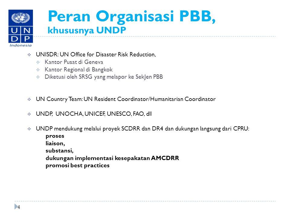 Peran Organisasi PBB, khususnya UNDP  UNISDR: UN Office for Disaster Risk Reduction,  Kantor Pusat di Geneva  Kantor Regional di Bangkok  Diketuai oleh SRSG yang melapor ke SekJen PBB  UN Country Team: UN Resident Coordinator/Humanitarian Coordinator  UNDP, UNOCHA, UNICEF, UNESCO, FAO, dll  UNDP mendukung melalui proyek SCDRR dan DR4 dan dukungan langsung dari CPRU: proses liaison, substansi, dukungan implementasi kesepakatan AMCDRR promosi best practices 4