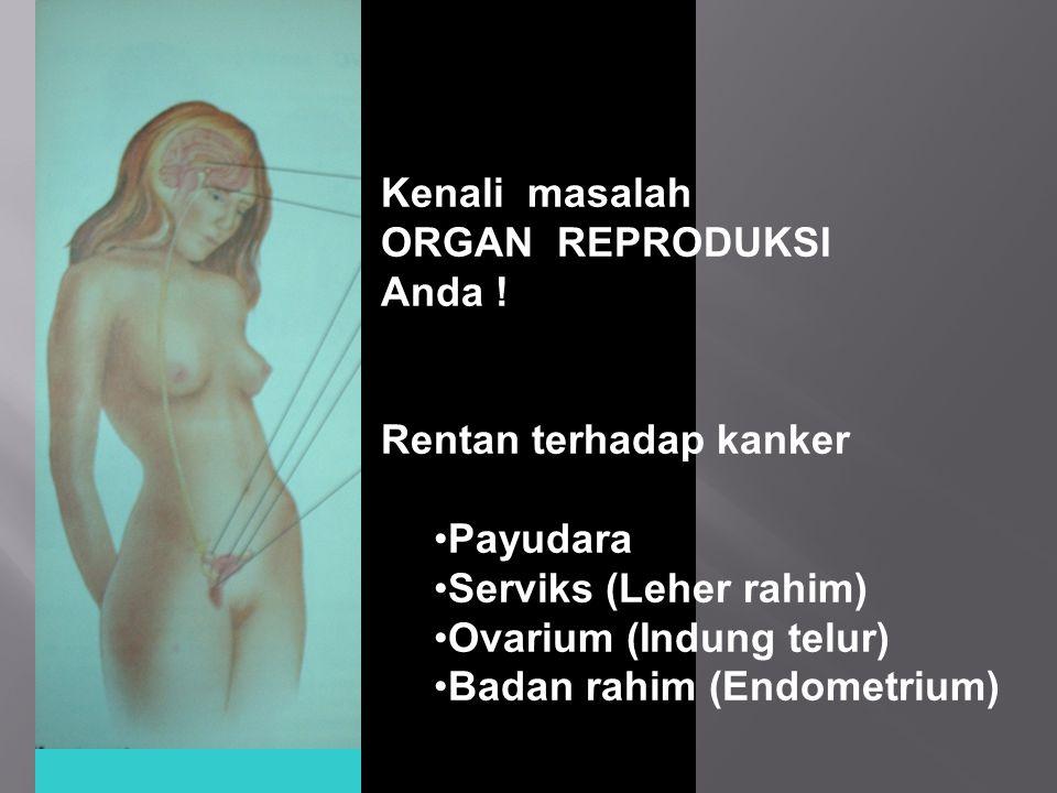 Kenali masalah ORGAN REPRODUKSI Anda ! Rentan terhadap kanker Payudara Serviks (Leher rahim) Ovarium (Indung telur) Badan rahim (Endometrium)