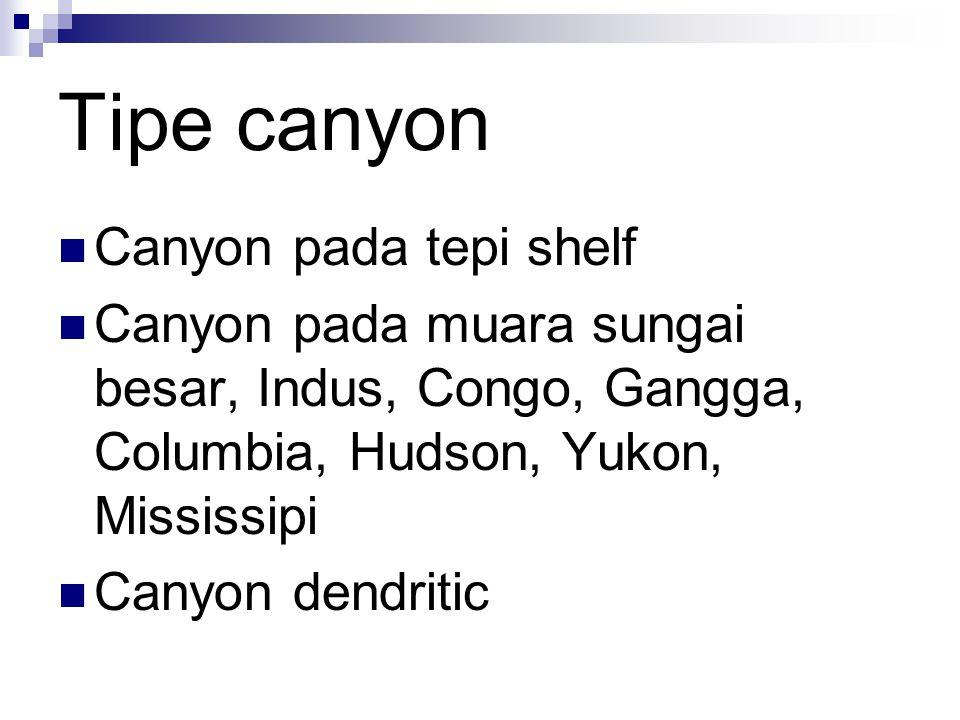 Tipe canyon Canyon pada tepi shelf Canyon pada muara sungai besar, Indus, Congo, Gangga, Columbia, Hudson, Yukon, Mississipi Canyon dendritic
