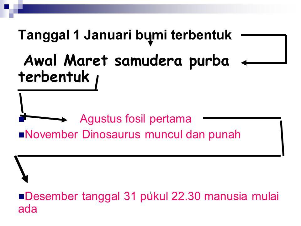 Tanggal 1 Januari bumi terbentuk Awal Maret samudera purba terbentuk Agustus fosil pertama November Dinosaurus muncul dan punah Desember tanggal 31 pu