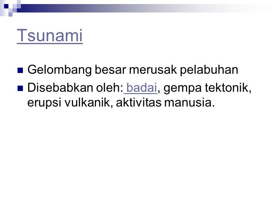 Tsunami Gelombang besar merusak pelabuhan Disebabkan oleh: badai, gempa tektonik, erupsi vulkanik, aktivitas manusia. badai