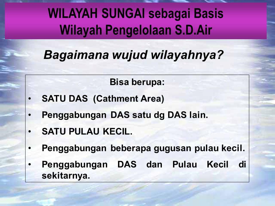 WILAYAH SUNGAI sebagai Basis Wilayah Pengelolaan S.D.Air mengapa ? 1.Sifat alami air yg mengalir secara dinamis dari tempat-tempat tertentu ke tempat
