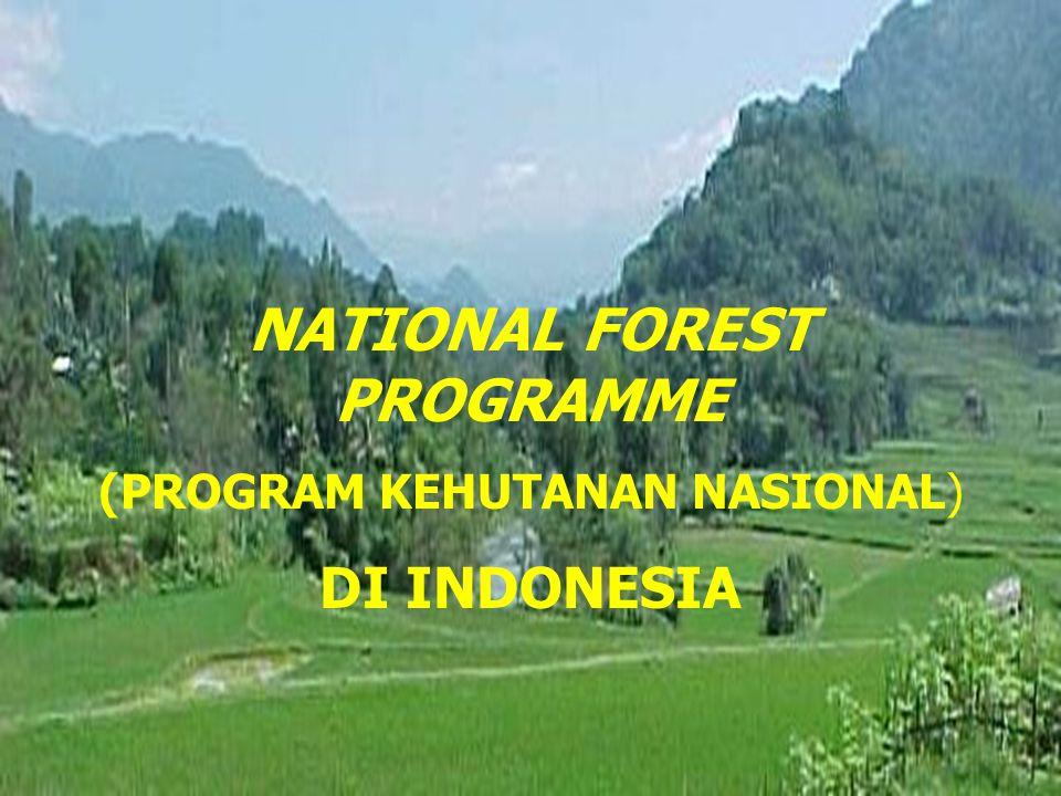 NATIONAL FOREST PROGRAMME (PROGRAM KEHUTANAN NASIONAL) DI INDONESIA