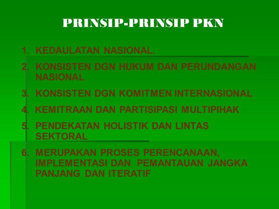 PRINSIP-PRINSIP PKN 1.KEDAULATAN NASIONAL. 2.KONSISTEN DGN HUKUM DAN PERUNDANGAN NASIONAL 3. KONSISTEN DGN KOMITMEN INTERNASIONAL 4. KEMITRAAN DAN PAR