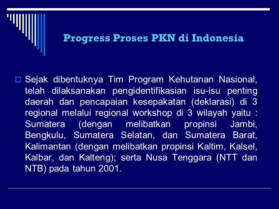 Progress Proses PKN di Indonesia  Sejak dibentuknya Tim Program Kehutanan Nasional, telah dilaksanakan pengidentifikasian isu-isu penting daerah dan