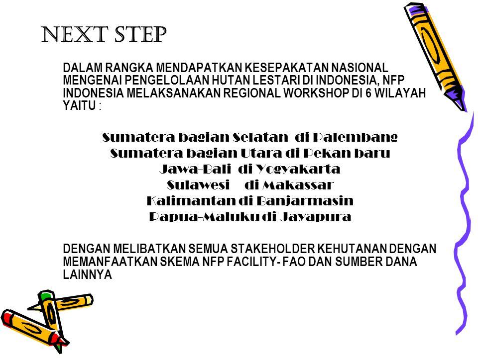 NEXT STEP DALAM RANGKA MENDAPATKAN KESEPAKATAN NASIONAL MENGENAI PENGELOLAAN HUTAN LESTARI DI INDONESIA, NFP INDONESIA MELAKSANAKAN REGIONAL WORKSHOP