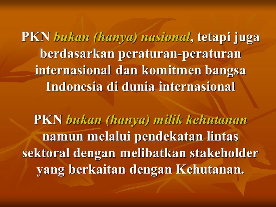 PKN bukan (hanya) nasional, tetapi juga berdasarkan peraturan-peraturan internasional dan komitmen bangsa Indonesia di dunia internasional PKN bukan (