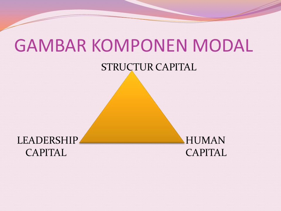 GAMBAR KOMPONEN MODAL STRUCTUR CAPITAL LEADERSHIPHUMAN CAPITALCAPITAL