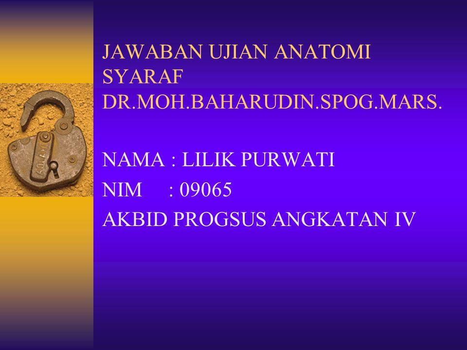 JAWABAN UJIAN ANATOMI SYARAF DR.MOH.BAHARUDIN.SPOG.MARS. NAMA : LILIK PURWATI NIM : 09065 AKBID PROGSUS ANGKATAN IV
