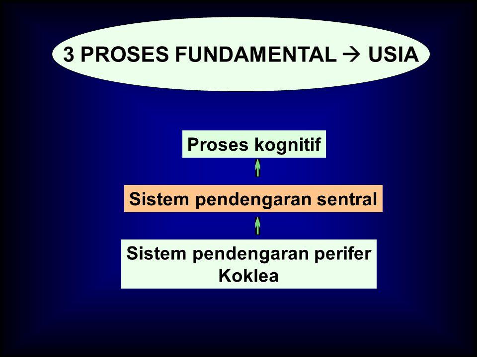 Sistem pendengaran perifer Koklea Sistem pendengaran sentral Proses kognitif 3 PROSES FUNDAMENTAL  USIA